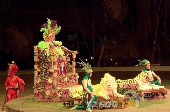 戏剧课动物模拟表演